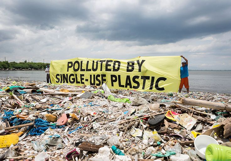 Our reliance on single-use plastic food and drink packaging is seriously harming our environment, so city councils, world leaders, big corporation and global organizations are taking note.