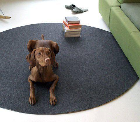10 circular rugs