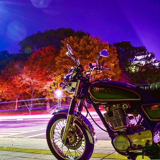 お城の中も撮りに行きたい。 #30秒撮影 #露出オート #デジカメ #bj_秋色2016 #イマソラ #ツーリング #sr400 #sr500 #YAMAHA #yamahaが美しい #yamahamotor #bj_mycar #fujifilm #fujifilm_xseries #fujifilmxm1 #写真好きな人と繋がりたい #写真撮ってる人と繋がりたい #バイクのある風景 #ig_japan #紅葉 #japancar #ig_cameras_united #japanfocus #東京カメラ部 #tokyocameraclub #ptk_vehicle #ニコン #Nikon #一眼レフ