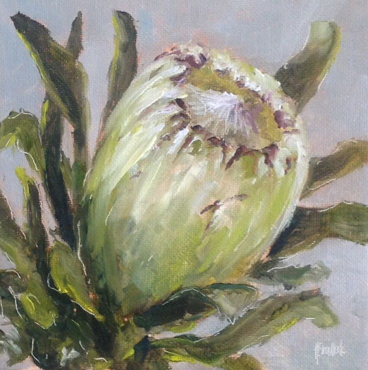 """Protea #255"" daily painting by Heidi Shedlock"