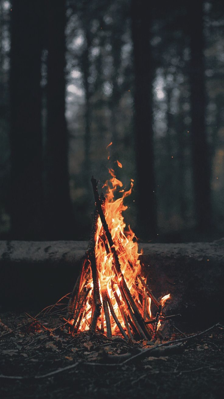 Fire.  By TC