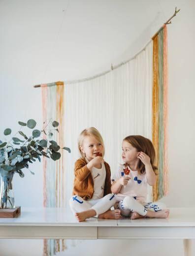 DIY Yarn Backdrop Easy Macrame Toddler Photoshoot Brothers Photography