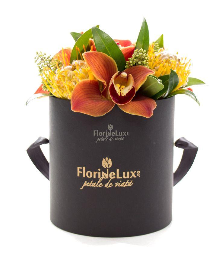 Cutie de lux cu flori exotice | FlorideLux.ro Orhidee speciale pentru orice ocazie http://floraria-floridelux.ro/orhidee-pret/