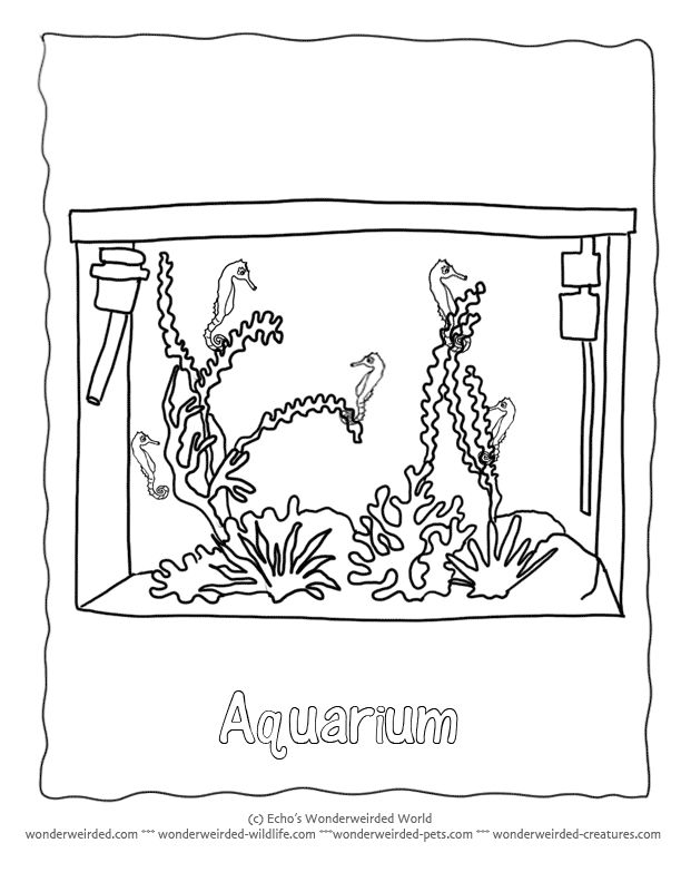 122 best :3 animal coloring pages images on pinterest | coloring ... - Aquarium Coloring Pages Printable