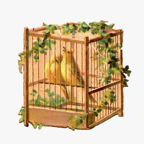 17 Best images about birdy Homes on Pinterest   Clip art, Birds ...