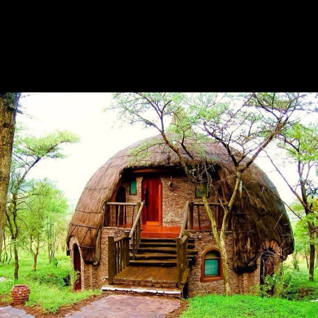 mushroom cottage: Domes Homes, Unusual Homes, Little House, Country House, Mushrooms House, National Parks, Hobbit House, Round House, Unusual House
