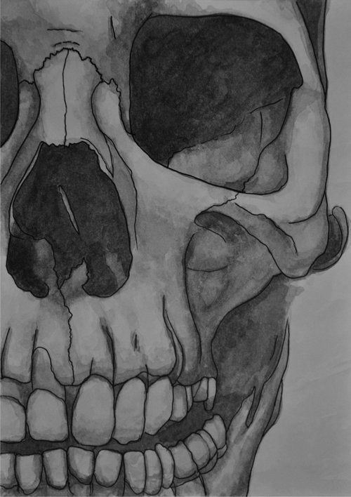 imagenes de calaveras para dibujar dificiles   Bienvenido a mi post sobreimagenes de calaveras para dibujar dificiles  En esta web tenem