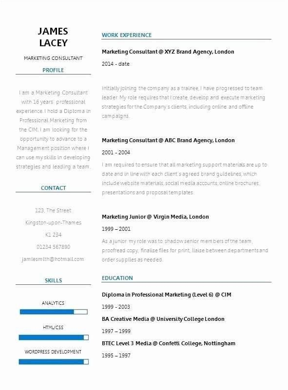Two Column Resume Template Awesome 14 Awesome Two Column Resume Template Collections
