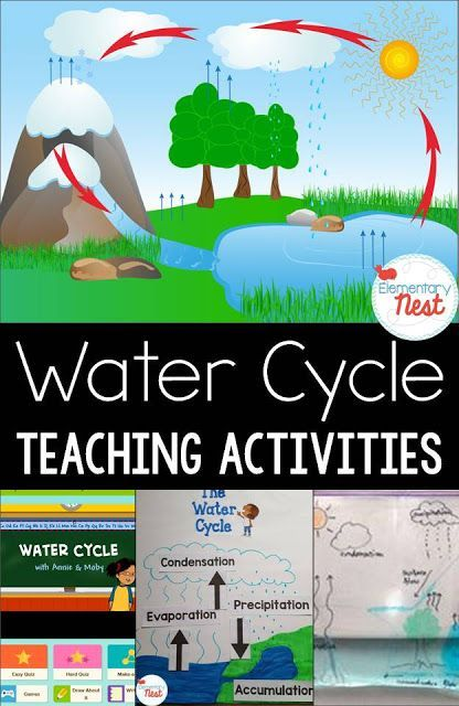 Best 25+ Water Cycle Activities ideas on Pinterest   Water cycle ...