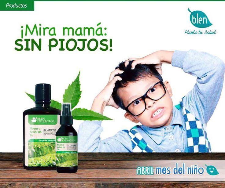 Mira mamá:   Sin piojos Árbol de té ,neem y tomillo. Shampoo capilar- gel capilar- Loción capilar.