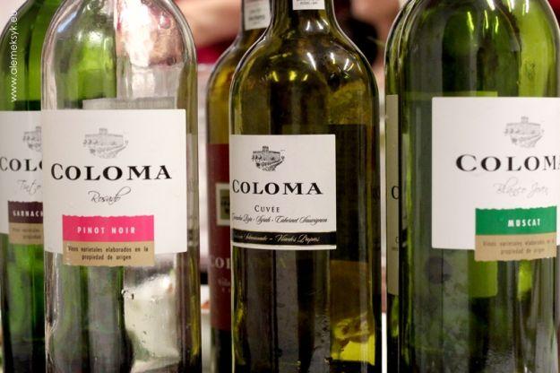 DEGUSTATION OF BODEGAS COLOMA WINES // DEGUSTACJA WIN BODEGAS COLOMA