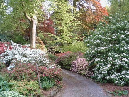 sissinghurst gardens england | Edge Gardens in Westerham Kent, kent gardens, gardens kent, gardens ...