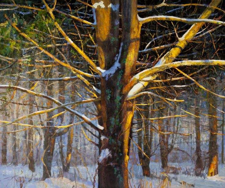Light and Art, with Peter Fiore - Savvy Painter