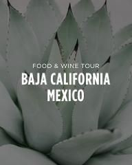 Salt & Wind Travel || Baja California, Mexico || Food & Wine Tours || Cooking Classes | Click for more details! #Mexico #BajaCaliforniaTravel #FoodToursMexico
