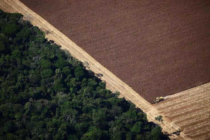 View of a Combine working in agricultural land in Santa Carmem, Mato Grosso, Brazil. July 2010. Rodrigo Baleia