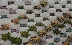 Piece of Eden: É um plantador Vertical! É uma tapeçaria Succulent! É uma parede de retenção!