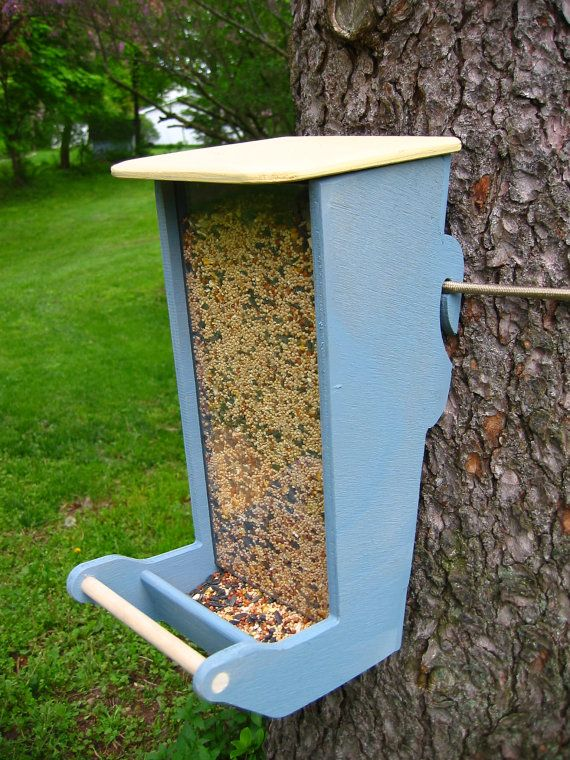 Bird Feeder- note the way it attaches to the tree. Cord can be loosened as the tree grows. Good leave no trace method