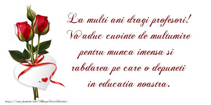 La multi ani dragi profesori! Va aduc cuvinte de multumire pentru munca imensa si rabdarea pe care o depuneti in educatia noastra.