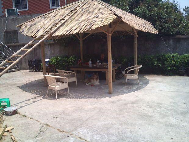 Bamboo roof tiki hut