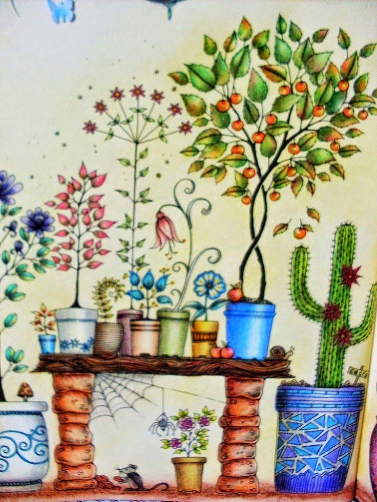 It Was Johanna Basford Secret Garden Gallery Scrap Gardens Coloring Books Pictures Search