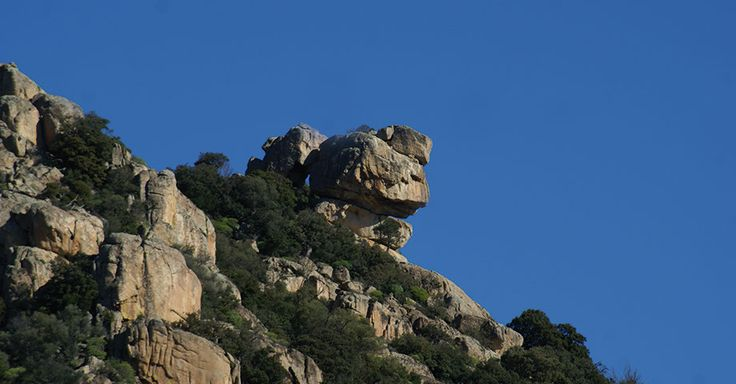 The Monte Maria is a granite massif, wooded with mediterranian Vegetagion of incredible beauty