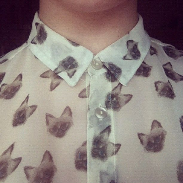 : Cats, Blouses, Fashion, Cat Shirts, Clothing, Cat Meow, Style Pinboard, Kitty, Cat Lady