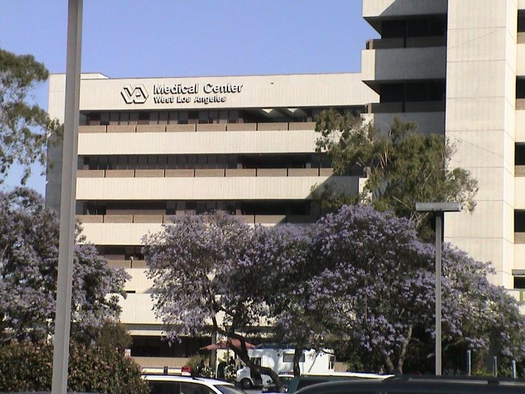 Almost 100 Veterans Died Waiting For Health Care At Los Angeles VA Hospital