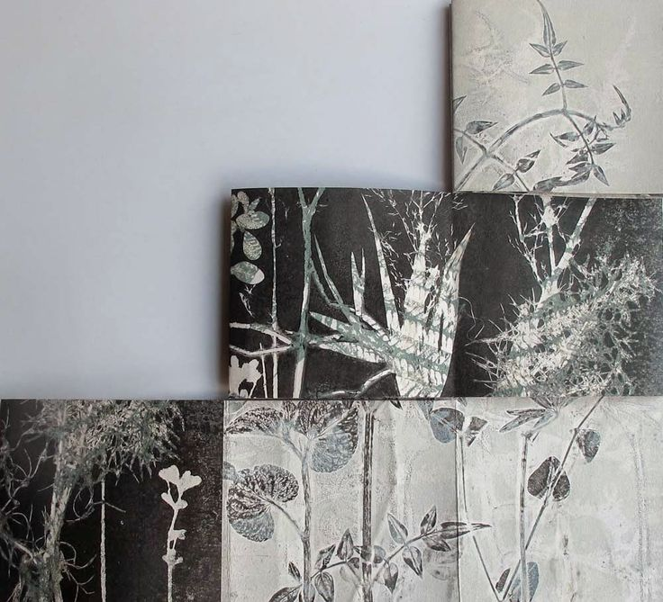 Stef Mitchell : field and hedgerow: Mono-printing