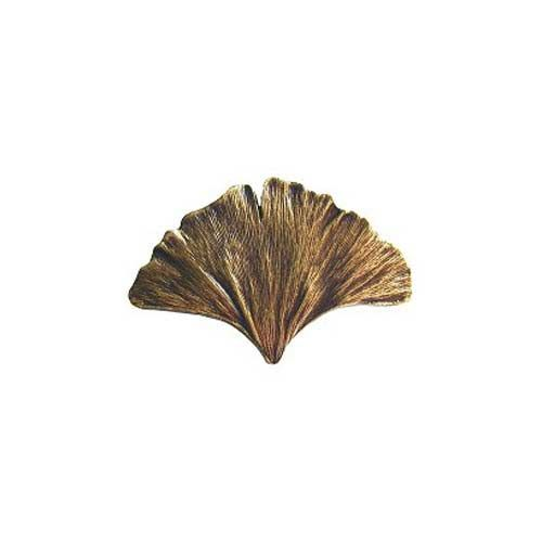 Antique Brass Gingko Leaf Knob Notting Hill Decorative Hardware  sc 1 st  Pinterest : notting hill cabinet hardware - Cheerinfomania.Com