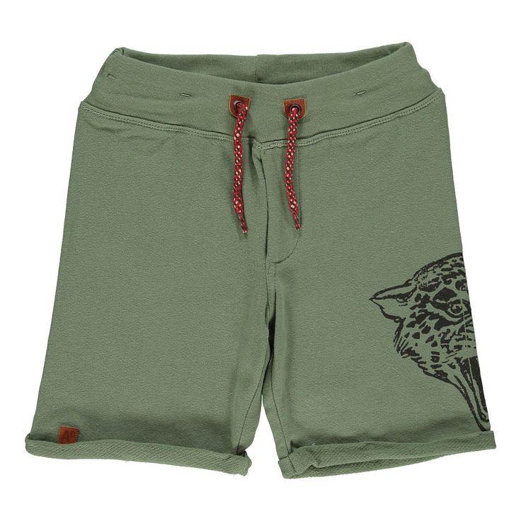 bermuda-ghepardo-verde-argilla