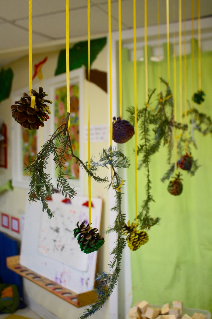 Classroom Hanging Ideas ~ Hanging pinecones and pine branch display the kids