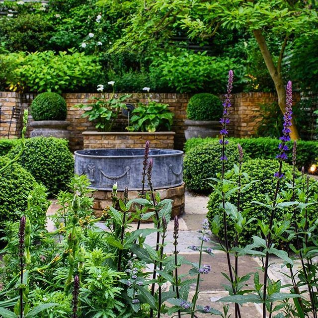 Knightsbridge Delbuonogazerwitzlandscapearchitecture Tommasodb Gardendesign Hclgardens Londongardens Plants Garden