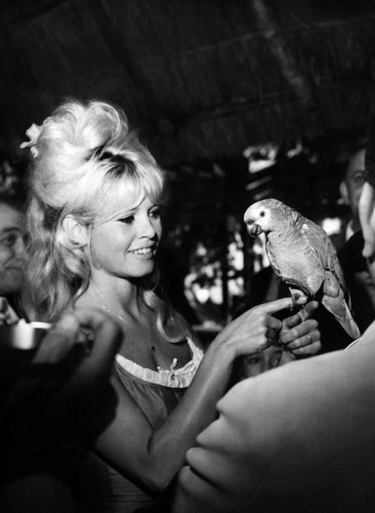 Brigitte Bardot and more women who rocked the cat eye trend! #makeup