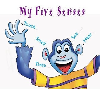 140385713356665534 on My Five Senses