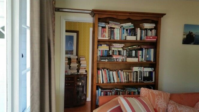 My bookcase / sliding door ( 2 )