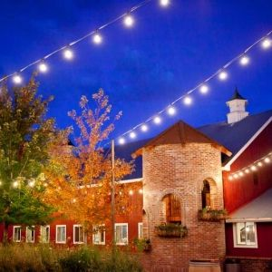 Top Colorado Wedding Venues | Biscuits & Berries
