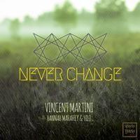 Sto ascoltando Never Change - Radio Edit di Vincent Martini su #TIMmusic