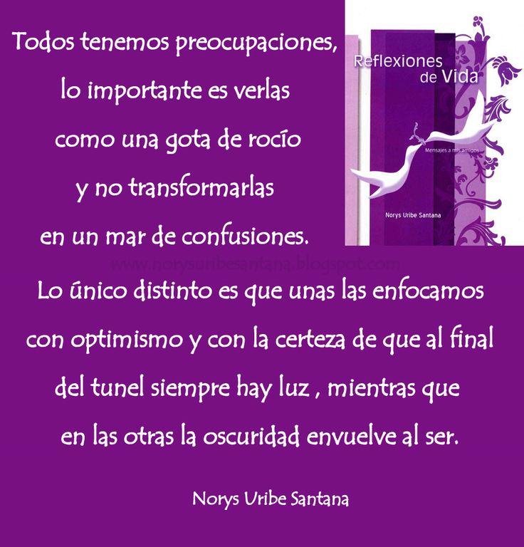 NORYS URIBE SANTANA: REFLEXIONES DE VIDA Nº 8: TODOS TENEMOS PREOCUPACIONES...