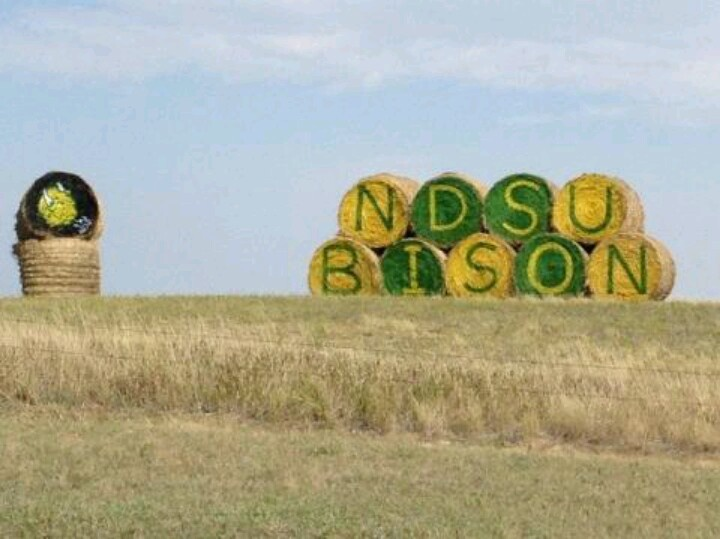 I saw this all last summer every weekend driving by!!! Now that's Bison Pride!!