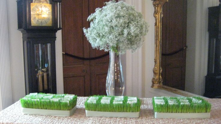 Escort card table featuring baby's breath and trays of wheatgrass.  www.helenolivia.com
