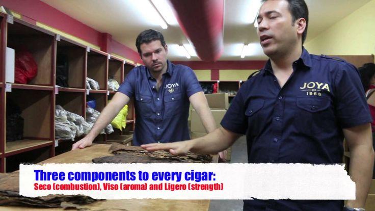 Joya De Nicaragua Factory Tour in Nicaragua