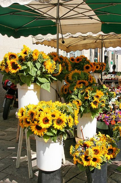 ♔ Sunflowers, Lices market, Rennes, Brittany