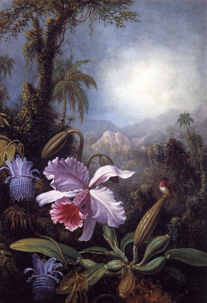 Martin Johnson Heade: Orchids, Passion Flowers and Hummingbird (circa 1875-1890)