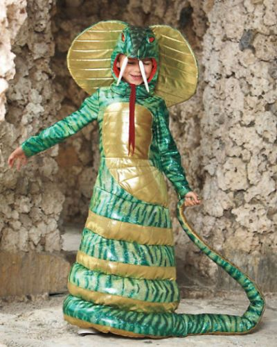 Wishcraft-by-Chasing-Fireflies-Green-King-Cobra-Snake-Costume-Size-6