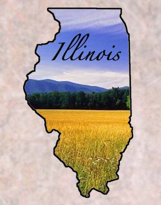 "Illinois  Entered the Union: Dec. 3, 1818 (21)	Capital: Springfield State Nicknames: Prairie State • Land of Lincoln State Motto: State sovereignty, national union Origin of Name: Algonquin for ""tribe of superior men"" State Tree: Live Oak	State Bird: Cardinal State Animal: White-tailed Deer	State Flower: Violet State Song: ""Illinois"" National Forests: 2 • State Parks: 43 • State Forests: 5 Famous for: Abraham Lincoln Historic Sites, Sears Tower"