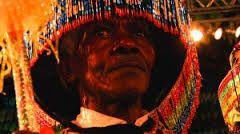 Image result for boi do maranhao