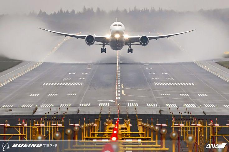 Boeing 787 Dreamliner! Wheels down ~ The Bird has landed! LOL!