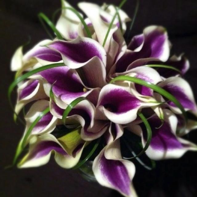 Picasso Calla Lily Bridal Bouquet With Bear Grass Calcallas Com