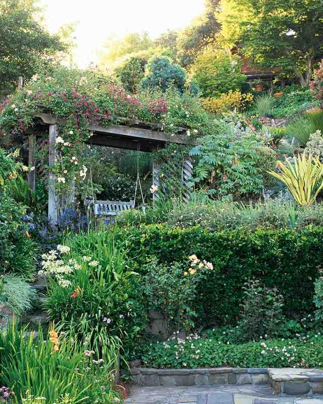 This Sweet San Francisco Garden Has A Hillside Swing Used To Best Advantage  For The View