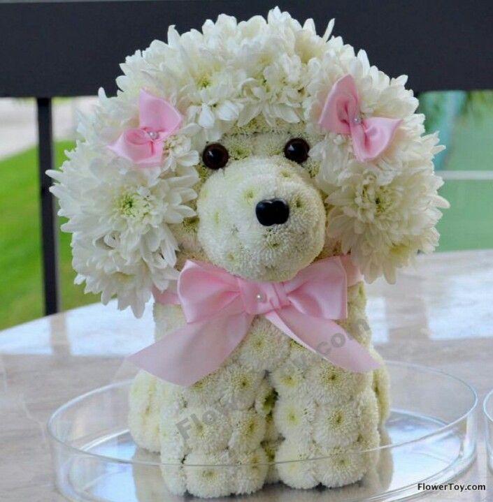 Floral poodle